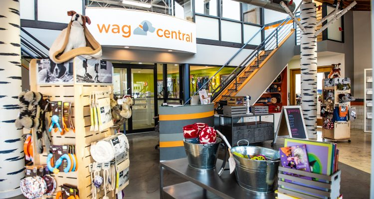 Wag Central Is Officially One Of America's Coolest Stores!